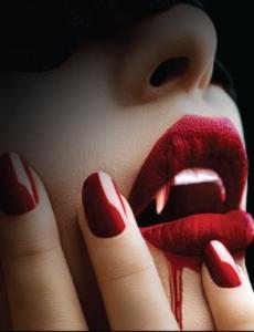 Hush Hush photo